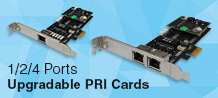 upgradable PRI Card